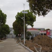 Manufacturer of 300W Wind-Solar Hybrid Power Street Light