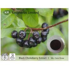 Extracto de Chokeberry negro Anthocyanidins 1% ~ 25% por UV
