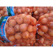 High quality fresh onion manufacturer from China