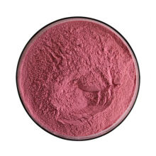 Manufacture Supply Bulk Food Grade Freeze Dried 99% Pomegranate Extract Juice Powder