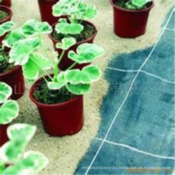 Tela anti de la hierba del 100% polipropileno / tela anti tejida del paño / tela de la barrera de la mala hierba