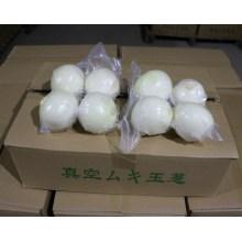 2016 heißer Verkauf frische Zwiebel