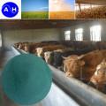Amino Acid Chelate Copper Feed Grade
