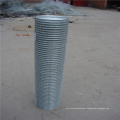 "1/2""x1"" opening galvanized before welding welded wire mesh"