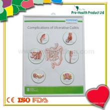 Tableau de mur médical en plastique patient