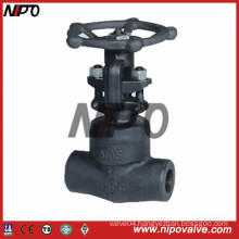 Thread and Socket Welded Forged Steel Gate Valve