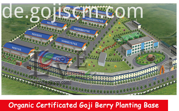 2017 New Goji Tea supplier