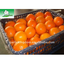 Cesta de plástico de 15 kg Orange Fresh Navel
