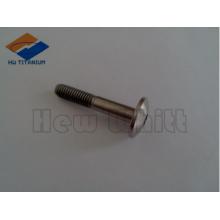 high strength Gr5 titanium cup screw
