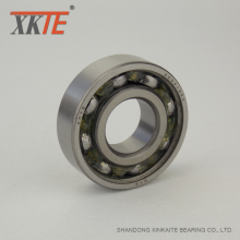 180204 C3 Bearing For Conveyor Roller Damper