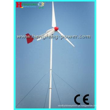 Turbina de vento de eixo horizontal de 1000W (manutenção)
