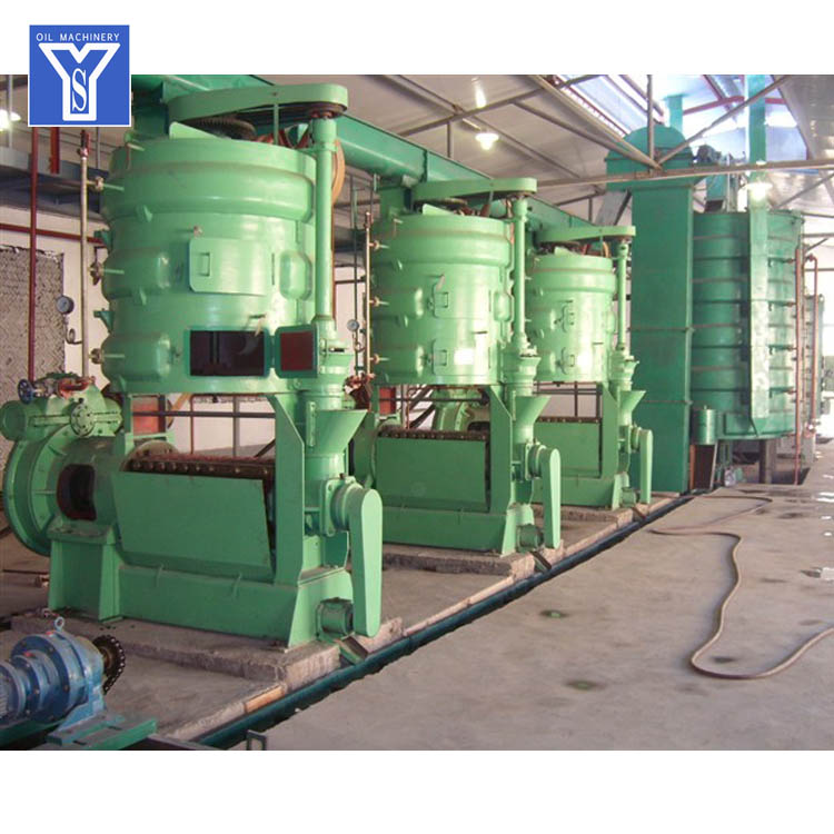 Groundnut Oil Extraction Line