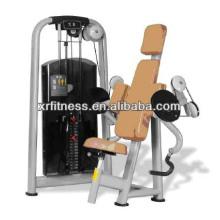 Équipement de forme physique en gros Biceps Curl Machine pour la santé