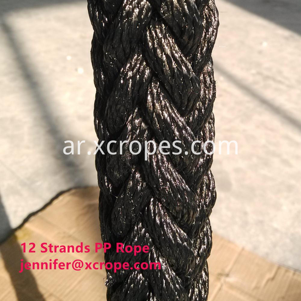 12 Strands Pp Rope