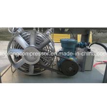 Главная Компрессор для компрессоров автомобилей CNG (BV-5/200)