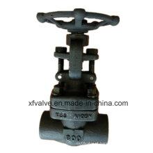 Válvula de porta forjada API6d da extremidade NPT da linha do aço A105