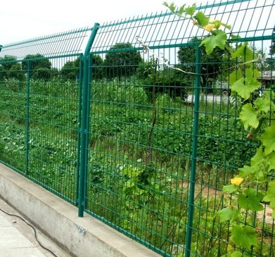 Frame type fence netting
