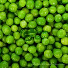 Alta qualidade conservas de legumes ervilhas verdes
