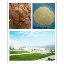 Enzym für Rinder (Futterzusatz)