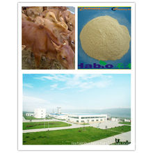 Enzyme for Cattle(feed additive)