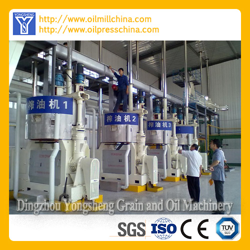 Spiral Oil Pressing Machinery