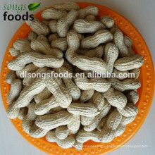 Chinese groundnuts inshell