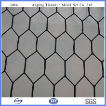PVC Coated Galvanized Chicken Wire Mesh (TS-J002)