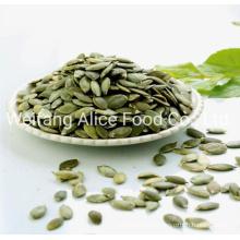 China New Crop Shine Skin Pumpkin Seed Kernel