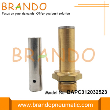 LPG CNG Brass Armature Thread Stem and Plunger