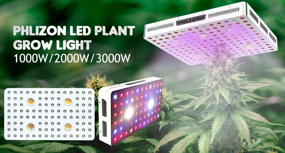 COB LED Grow Light
