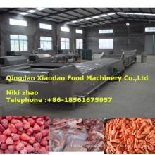 Auftaugerät für gefrorenes Fleisch, Meeresfrüchte, Obst