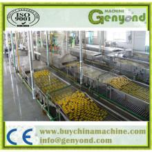 Túnel Automático Completo de Pasteurização em Aço Inoxidável