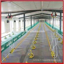 matériaux pour la production de poulet / équipements / produits / pour la maison / design / système