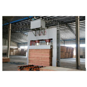 Construction Template Plywood Board Production Lines