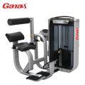Professionele Gym Oefening Apparatuur Back Extension