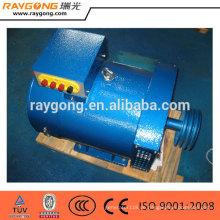 Generator ohne Motor 3KW von 220V
