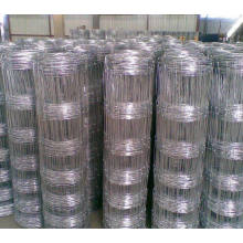 Galvanisé Grassland / Field Cattle / Sheep Square Wire Mesh Fence
