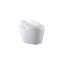 Sanitarios especializados de ajuste de presión y temperatura de agua estándar de alta gama en Europa con asiento de inodoro automático cálido