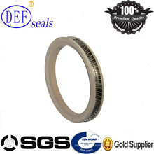 Auto Parts PTFE Mechanical Stainless Steel Spring Energized Seals
