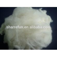 Cheveux de raton laveur