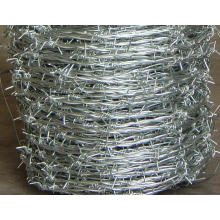 Hot-Dipped Barbed Wire (W-CS)