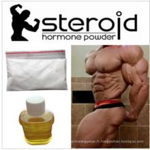 Hormones de Dione-3-Keta d'Estradiene de vente chaude pour le bodybuilding CAS 5571-36-8