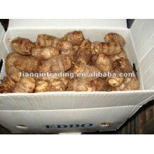 fresh Chinese taro