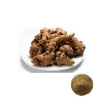 Food grade high purity Panax/Radix Notoginseng Extract 10%-80% Sanchinoside