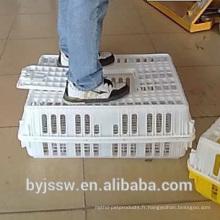 Cage de transport de poulet en plastique pour volaille
