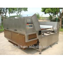 Alta qualidade fábrica de quartzo areia China classificador de cor máquina