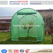 garden green plant house PE HLT