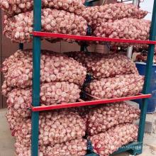 Hochwertiger frischer Knoblauch neue Ernte frischer Knoblauch