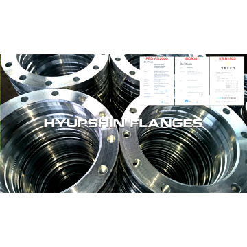 Lapped Loose Type 02 EN1092-1 Flange