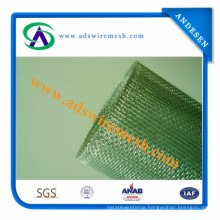 Bwg38-Bwg20 Electro Galvanized Square Wire Mesh (ISO9001: 2000 Factory)